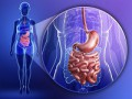 Métodos para la modificación de la microbiota